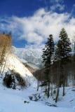 piatra de montagnes de craiului Photo libre de droits