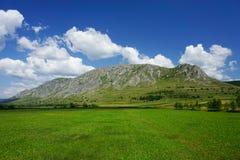 Piatra Secuiului berg i Transylvania, Rumänien arkivfoto