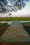 Piattaforma calma su un ramo del fiume fotografie stock