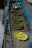 Piatti ceramici fatti a mano Immagine Stock