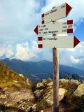 Piatti con le tracce di montagna delle marcature, le dolomia di Brenta Fotografia Stock