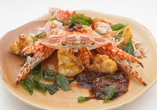 Piatti cucina dell'internazionale della Cina e della Tailandia Fotografie Stock Libere da Diritti