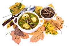 Piatti dai funghi Minestra di autunno con i funghi della foresta Fotografia Stock Libera da Diritti