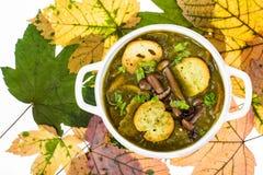 Piatti dai funghi Minestra di autunno con i funghi della foresta Fotografie Stock Libere da Diritti