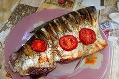 Piatti della carpa Fotografia Stock