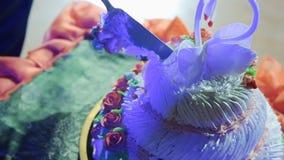 Piatti di piegatura e di taglio sulla torta nunziale stock footage