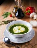 Piatto bianco con minestra verde Fotografia Stock