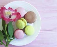 piatto bianco del fondo di legno del macaron, gastronomie del pastello della Francia del fiore di alstroemeria Fotografia Stock Libera da Diritti
