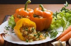 Piatto bulgaro di cucina Fotografie Stock