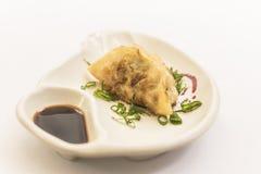 Piatto ceramico con il guioza e shoyu su fondo bianco immagine stock