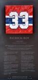 Piatto commemorativo 33 di Patrick Roy Fotografie Stock Libere da Diritti