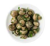 Piatto con i funghi marinati Immagini Stock