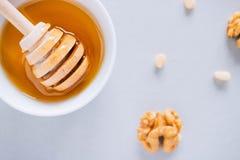 Piatto con il merlo acquaiolo del miele Immagini Stock Libere da Diritti