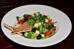 Piatto con insalata Immagine Stock Libera da Diritti