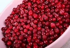 Piatto con l'uva di monte congelata Immagini Stock Libere da Diritti