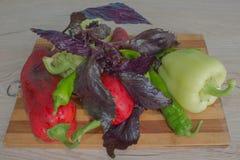 Piatto con le verdure sulla tavola, fondo vago della cucina Backgro del peperone dolce, basilico e pomodoro verdi e rossi Immagine Stock
