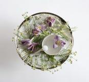 Piatto d'annata e fiori Vista ambientale Disposizione piana, vista superiore Fotografia Stock