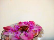 Piatto decorato con i fiori e la lampada a olio Fotografie Stock