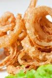 Piatto degli anelli di cipolla Fotografia Stock Libera da Diritti