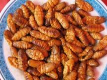 Piatto degli insetti fritti Fotografia Stock