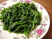 Piatto degli spinaci Immagine Stock Libera da Diritti