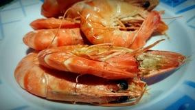 Piatto dei frutti di mare del hipon del gamberetto del gamberetto cotto a vapore Fotografia Stock
