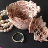 Piatto dei gioielli e dell'anello di fidanzamento Fotografia Stock