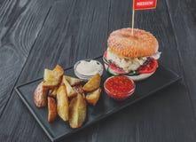 Piatto del fast food sopra la vista Cunei delle fritture e dell'hamburger Immagine Stock Libera da Diritti