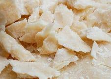 Piatto del formaggio dell'assaggio sul piatto di porcellana Fotografia Stock