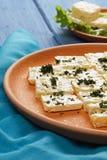 Piatto del primo piano del formaggio Fotografie Stock