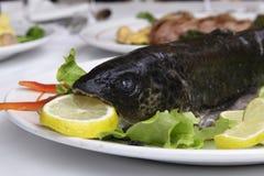 Piatto del ristorante - trota selvaggia prima della cottura Immagini Stock Libere da Diritti