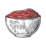 Piatto del sause del pomodoro Illustrazione incisa vettore su fondo bianco Immagini Stock