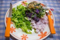 Piatto del vegano con insalata e riso Fotografia Stock Libera da Diritti