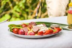 Piatto dell'aperitivo di stile del Balcani con la salsiccia ed il formaggio immagini stock