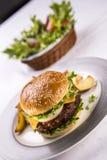 Piatto dell'hamburger Fotografia Stock Libera da Diritti