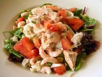 Piatto dell'insalata dei frutti di mare Fotografie Stock Libere da Diritti