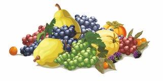 Piatto della frutta su fondo bianco Immagine Stock