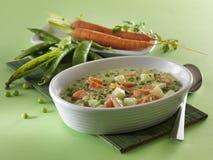 Piatto della verdura della sorgente fotografia stock