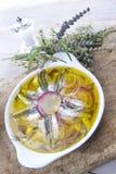 Piatto delle acciughe e delle cipolle Fotografie Stock Libere da Diritti