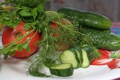 Piatto delle verdure Immagine Stock Libera da Diritti