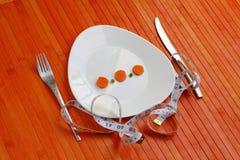 Piatto di dieta delle verdure fotografie stock libere da diritti