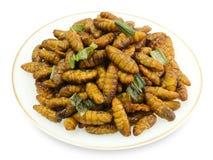 Piatto di Fried Coconut Worms profondo su fondo bianco immagini stock libere da diritti