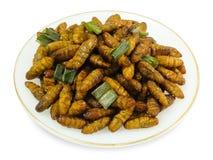 Piatto di Fried Coconut Worms profondo su fondo bianco immagini stock