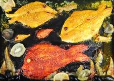 Piatto di pesce Fotografia Stock Libera da Diritti