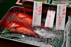 Piatto di pesce, mercato ittico di Tokyo Immagine Stock Libera da Diritti