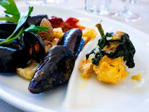 Piatto di pesce misto con le cozze ed il merluzzo di sale fotografia stock