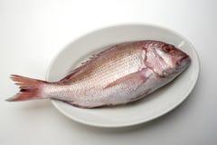 Piatto di pesci Fotografie Stock