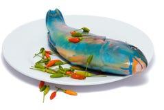 Piatto di pesci grezzi tropicale Fotografie Stock Libere da Diritti