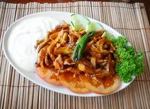 Piatto di pollo turco Immagine Stock