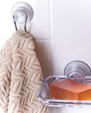 Piatto di sapone 2 Fotografia Stock